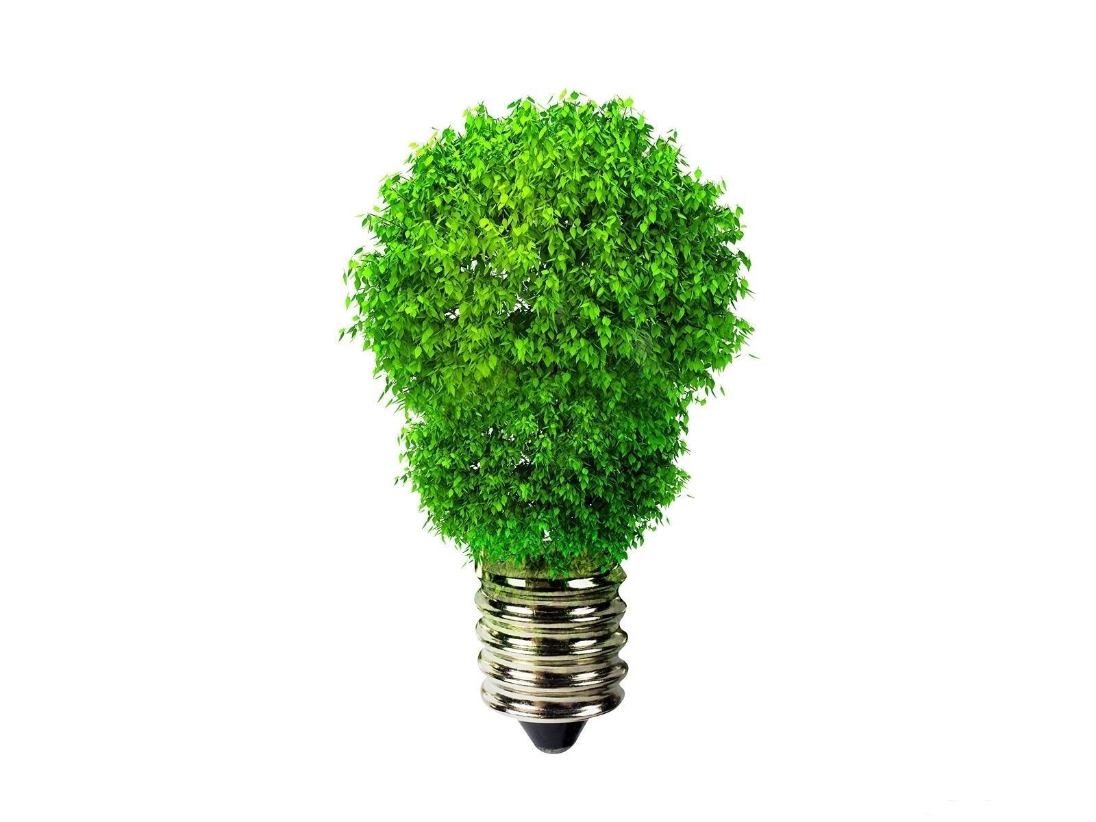 CBRE Cree En Los Beneficios De La Demanda De Energía Verde