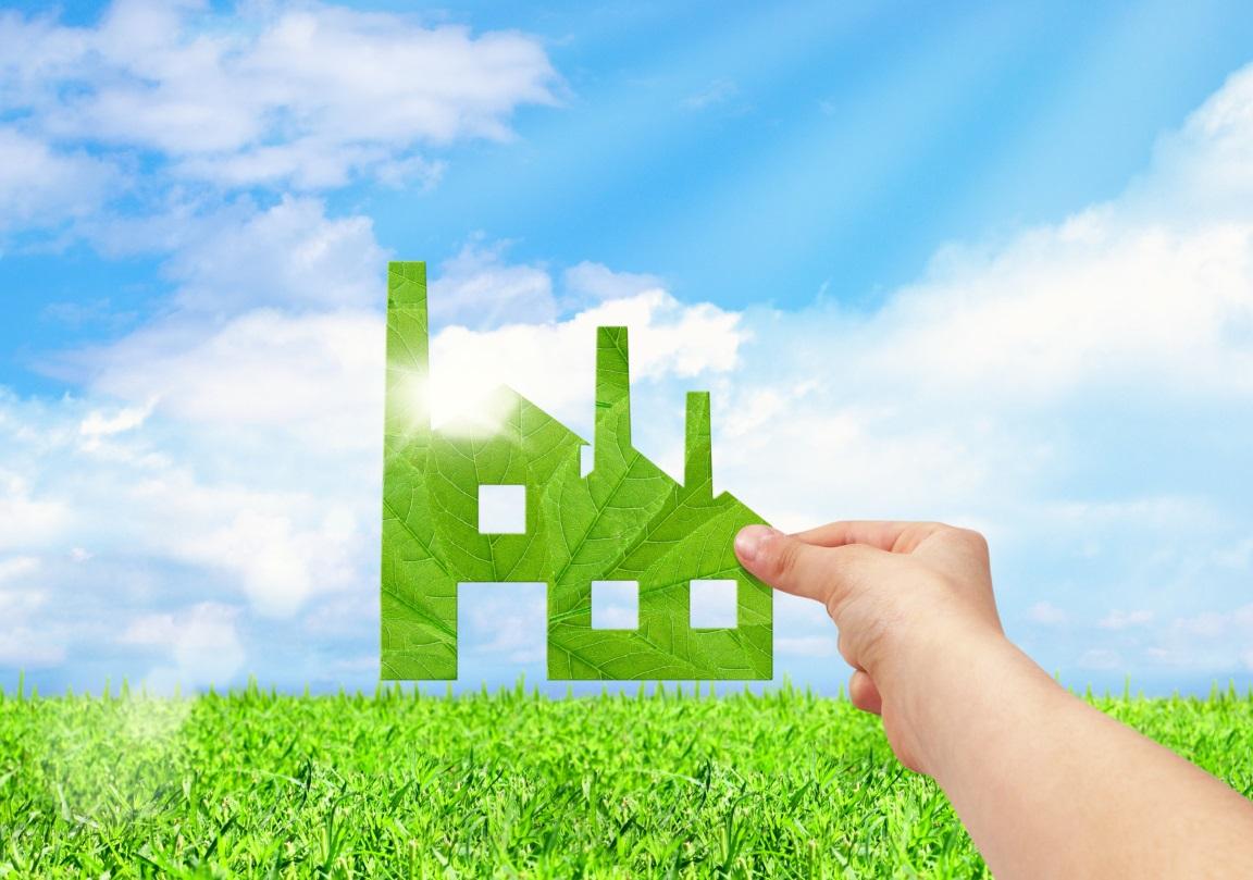 Empresas, Electricidad Verde Y RSC