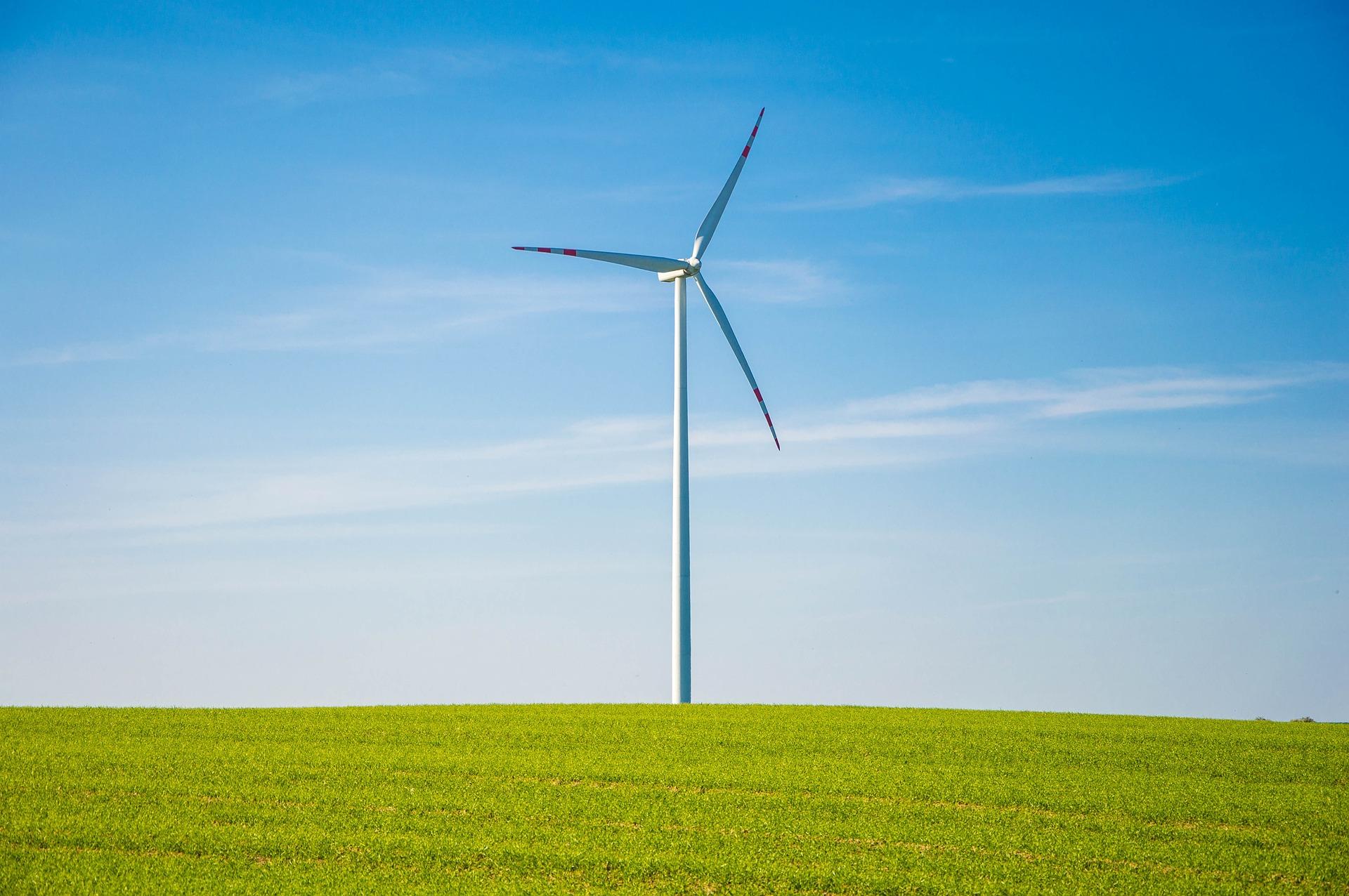 EKOenergía suma esfuerzos individuales para construir un futuro sostenible